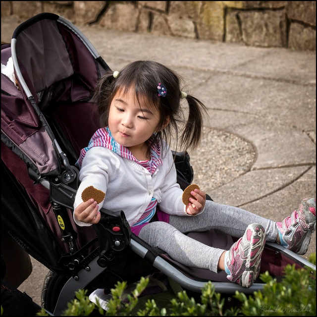 Little Girl With Cookie